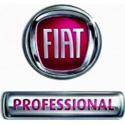 Logo FIAT PROFESSIONAL da...